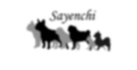 Sayenchi.png