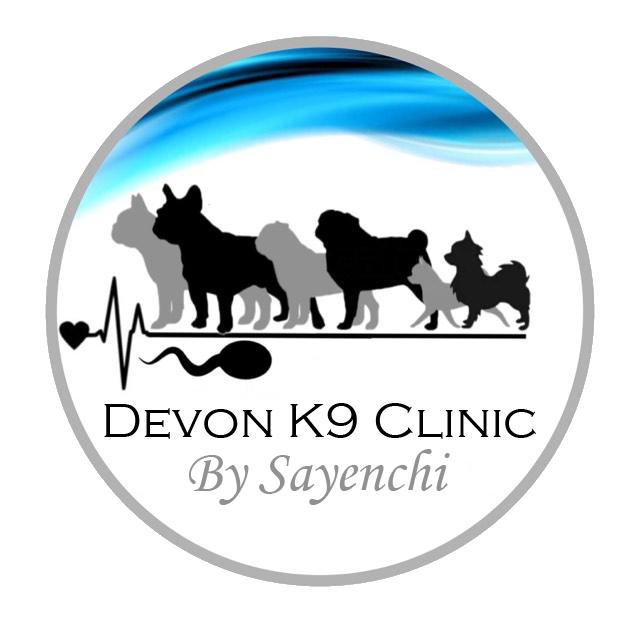 Devon K9 Clinic