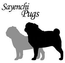 Sayenchi Pugs