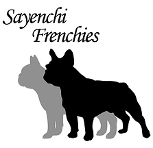 Sayenchi Frenchies