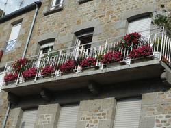 6 Place d'Estouteville_compressed