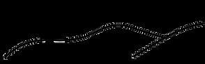 Ungersberg Logo.png