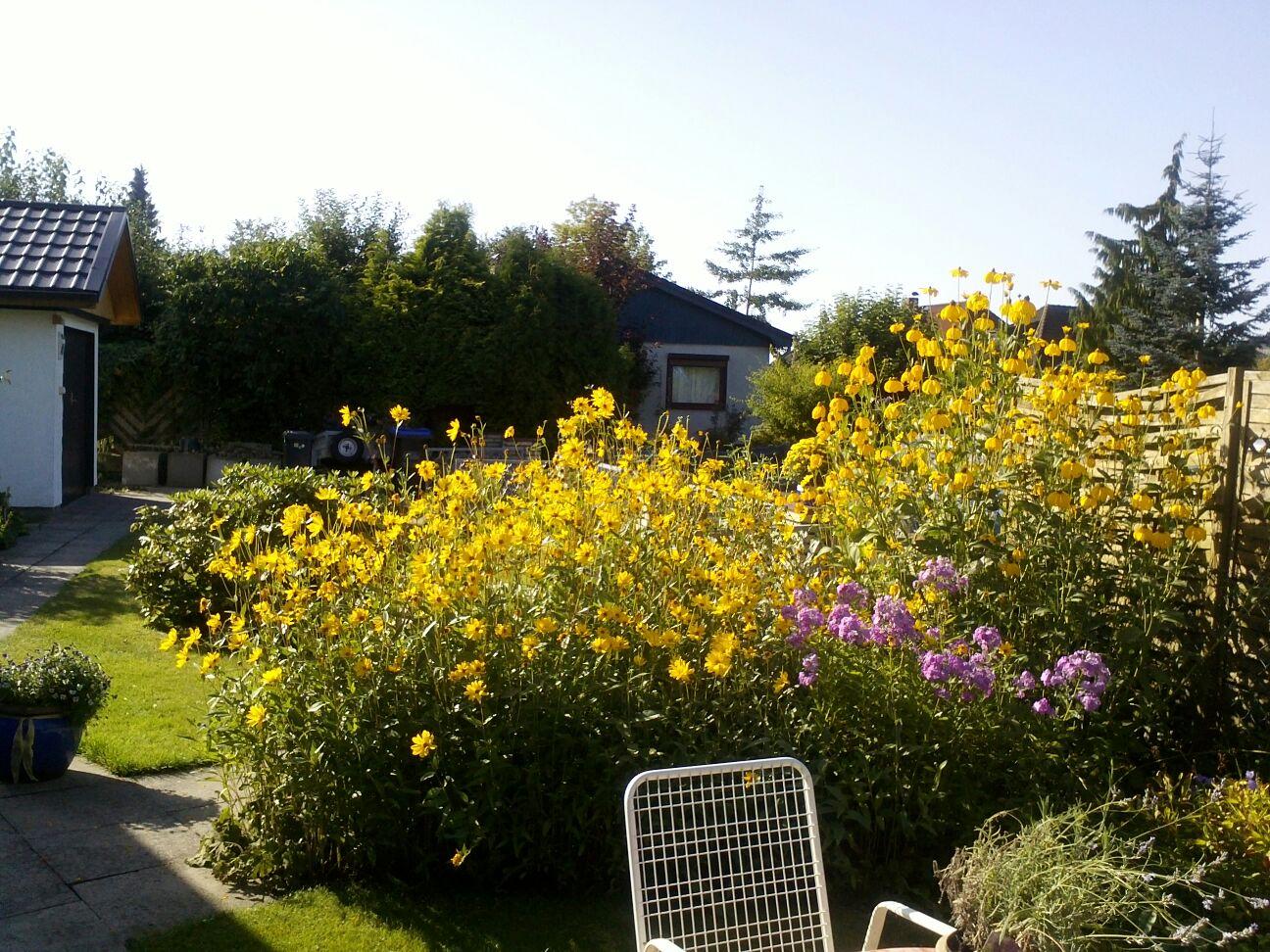 Garten Ferienhaus Jork