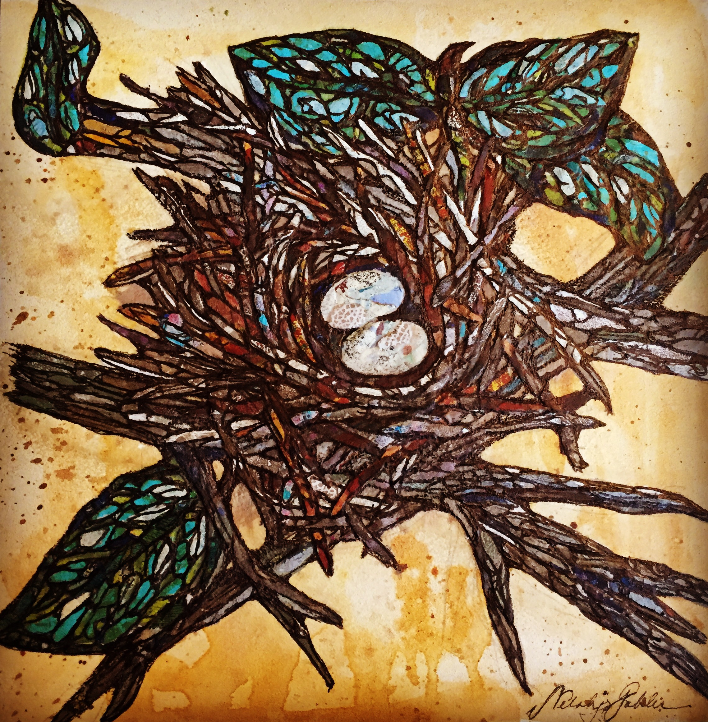 Birds Eggs.JPG