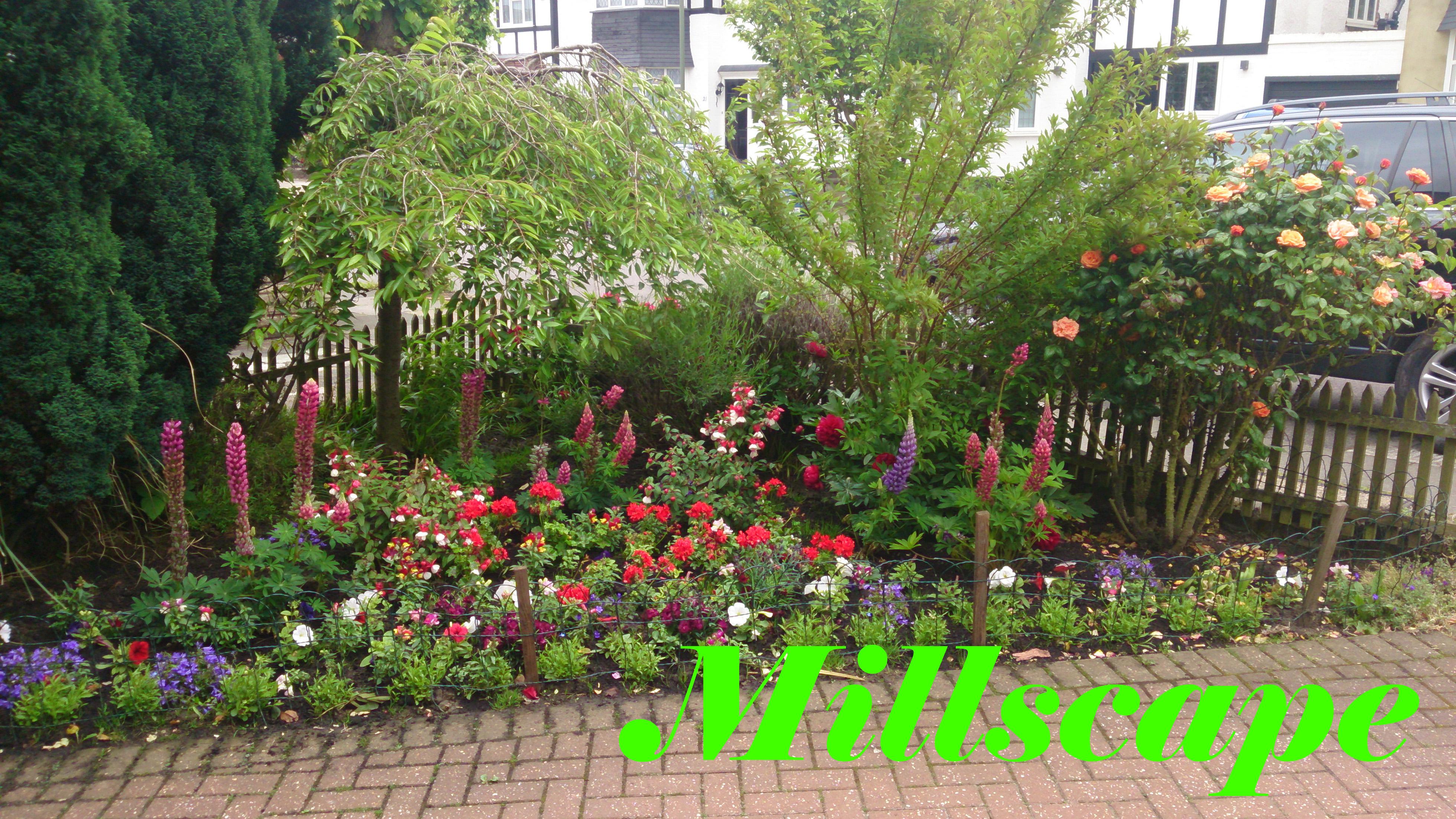 design, planting, landscaping