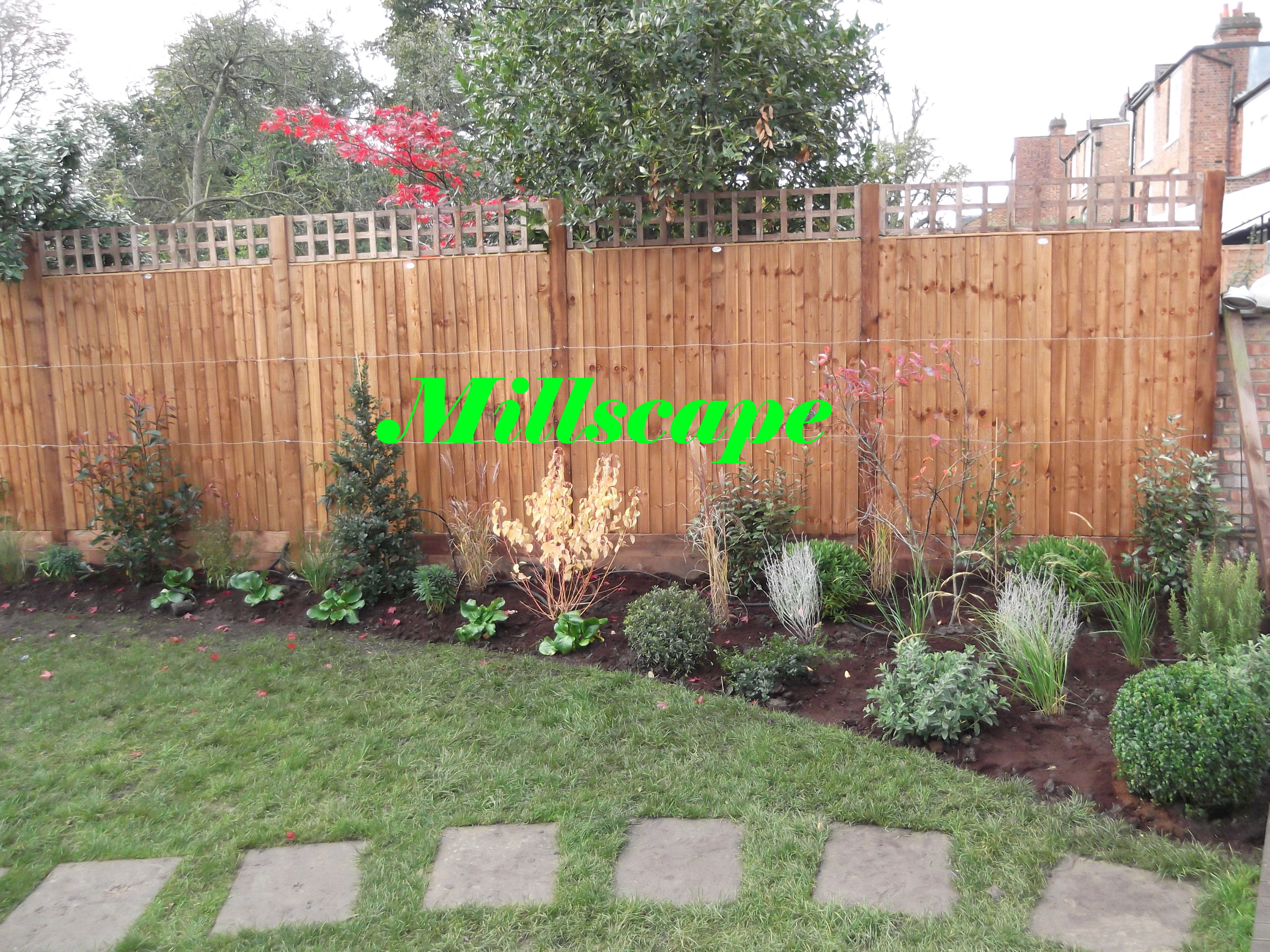 fencing, planting, landscaping
