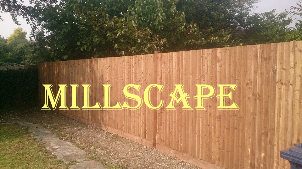 landscaping, fencing, design