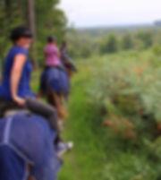 Paardrijden, kamperen, natuurhuisje, Domaine de Soulisse, Frankrijk