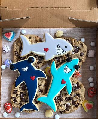SDB JAWSOME Cookie Box-r1.jpg