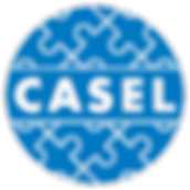 logo-casel-98bc21809733c000e0a2e720abf33