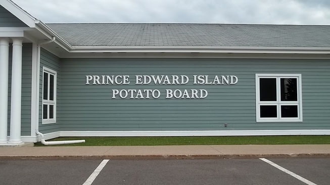 pboard formed letters.JPG