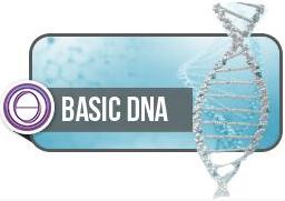 DNA-basic.png