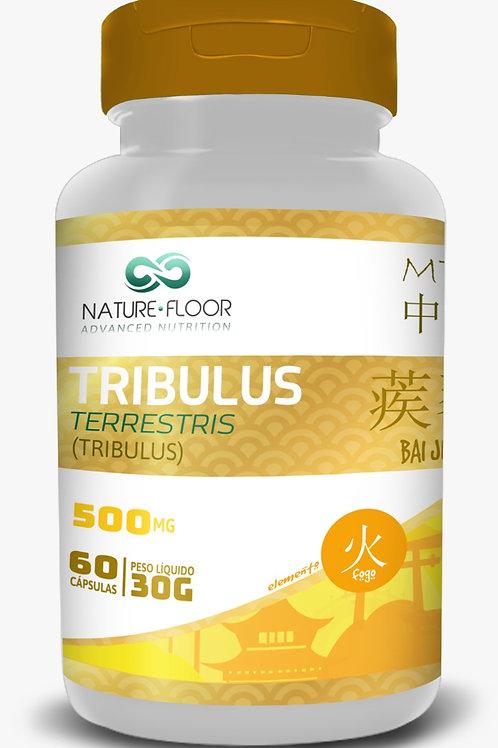 Tribulus terrestres nature floor 67% 500mg c 60 cps