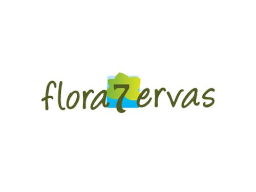flora 7 ervas