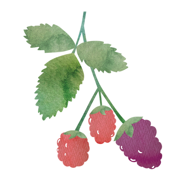 adoberry.png
