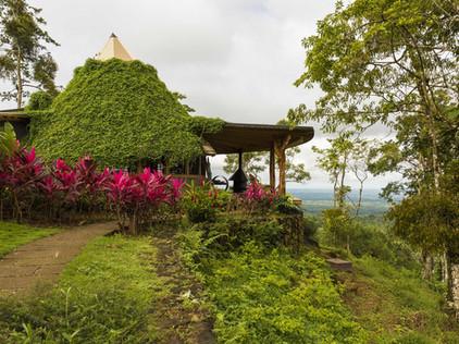 Origins Lodge - Bungalow