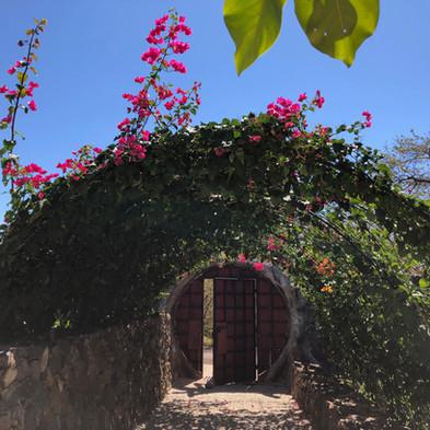 Latica Lodge