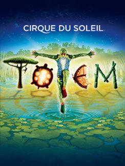 Circus, entertainment, show, multimedia, cirque du soleil, chapiteau,