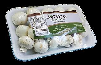bandeja cogumelo champignon