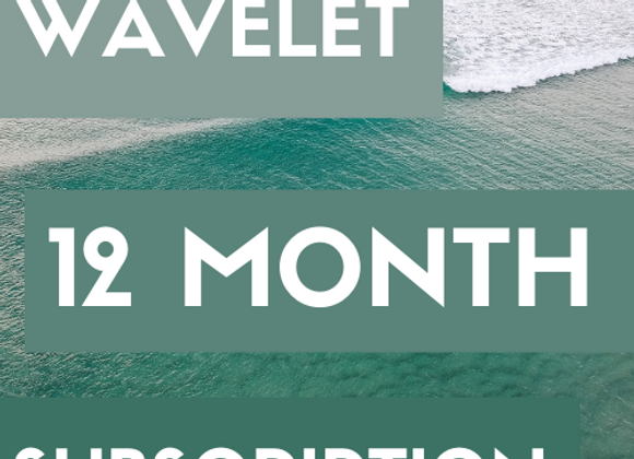 12 months of WAVELET boxes