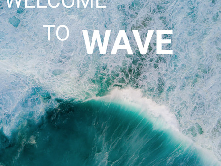 WELCOME TO WAVE