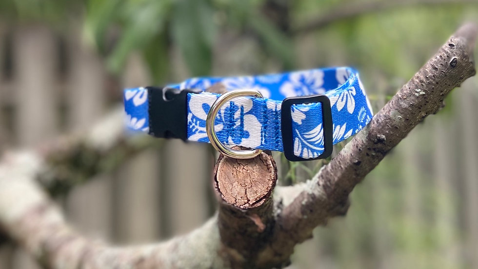 L/XL Royal Blue Hibiscus pet collar