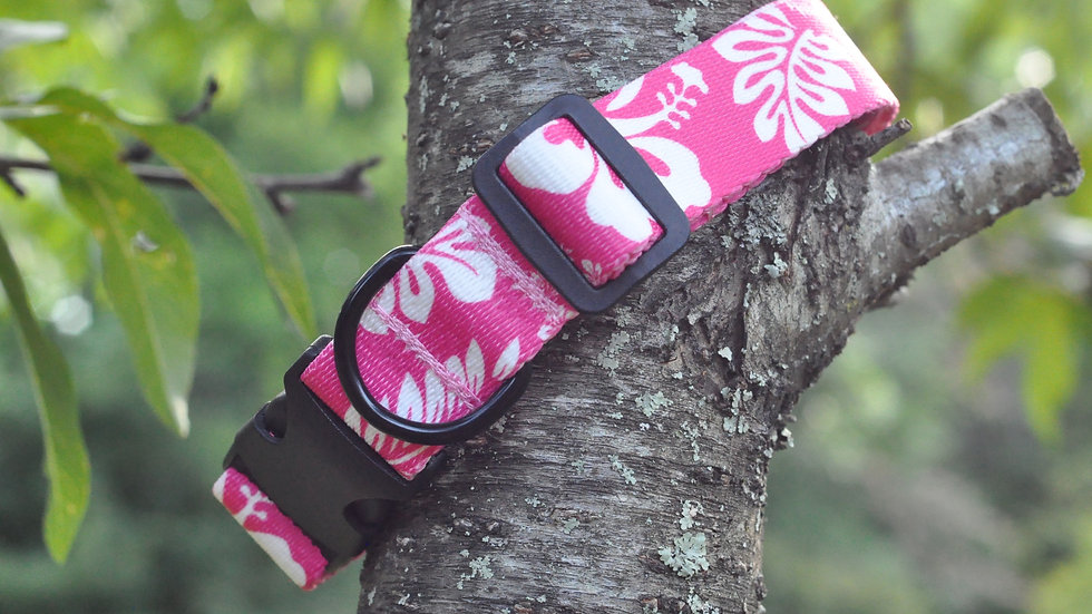 Medium Pink Hibiscus pet collar