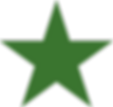 Green_star_41-108-41.png