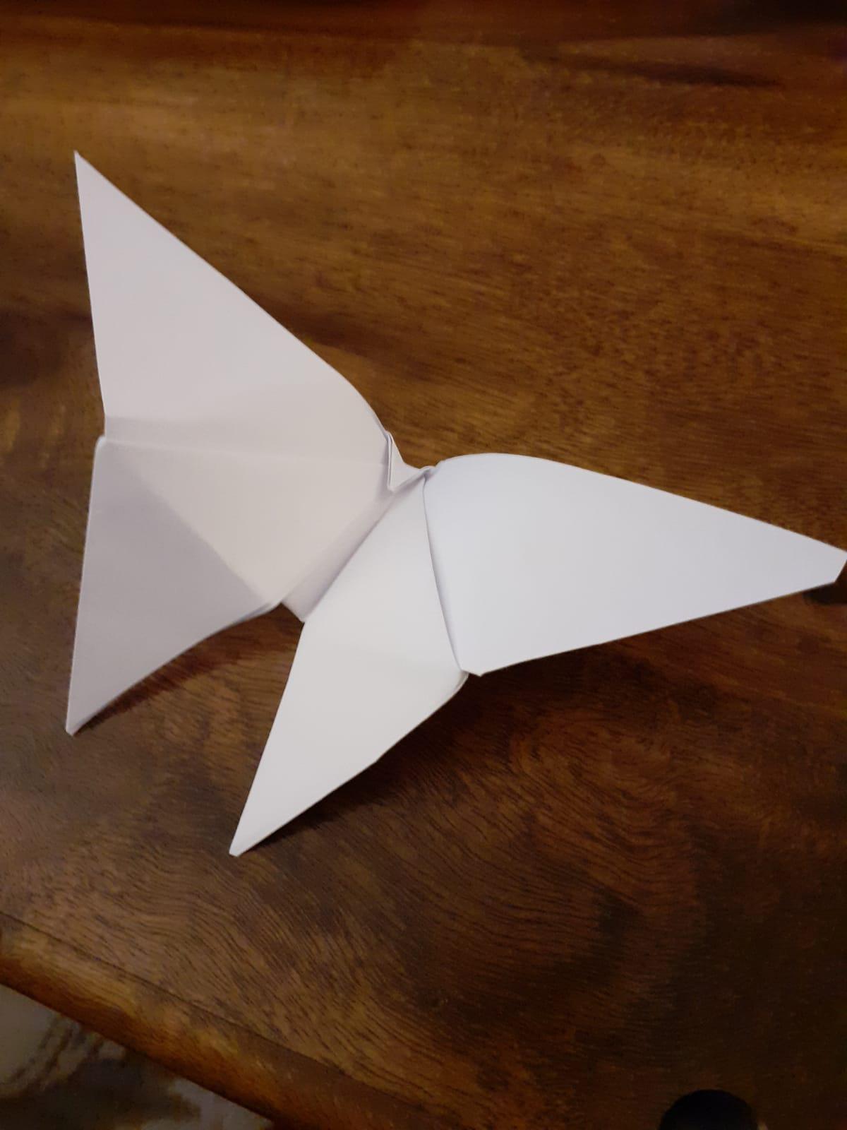 Ang origami 1