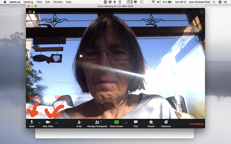 Zoom on mac.png
