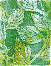 20-monotype-leaves-2-P1030403-smaller-we