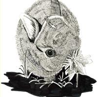 Blk & Wht Drawing Rabbit.jpg