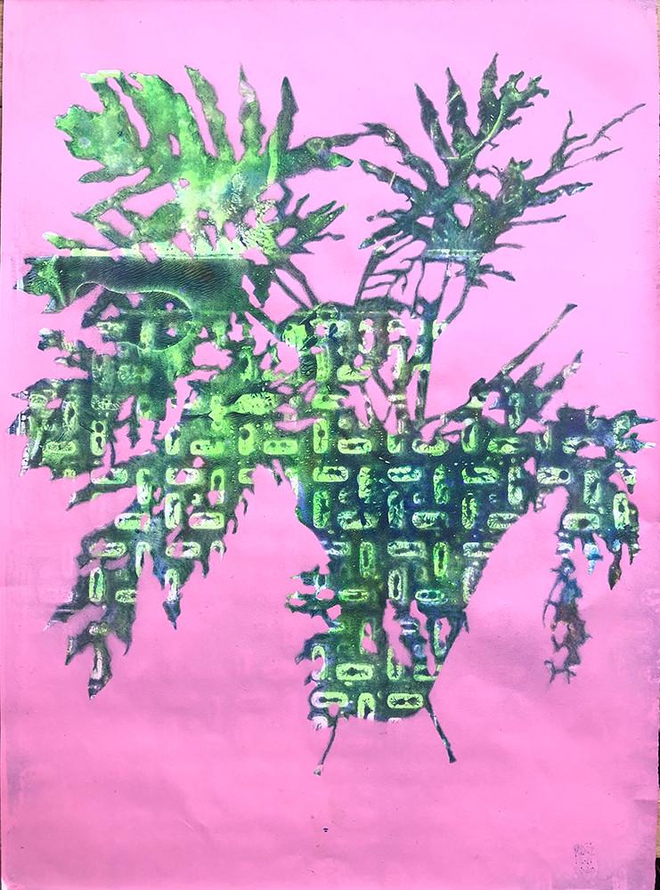 20-Monoprint A4 Una de Danta Pink. 2020