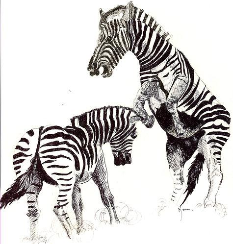 Pair of Zebras by Kenna Dozier