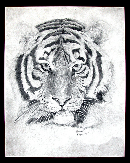 Portrait of a Tiger  by  Kenna Dozier
