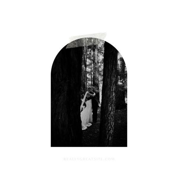 A lovely wooded black and white scene is illuminated by the bride and groom hugging lovingly in the center. Trees frame both sides of the couple.