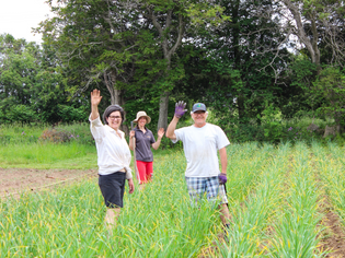 From Seedling to Store: A Local Look at Brandner Farms
