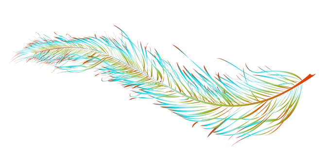 wanda-logo-FEATHER-ONLY.png
