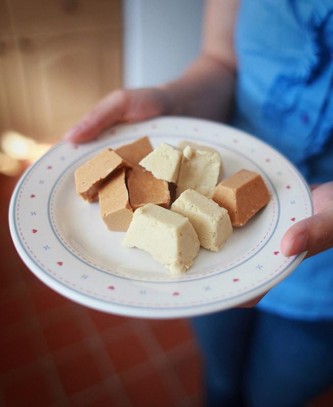 PPB Nutty Protein Fudge