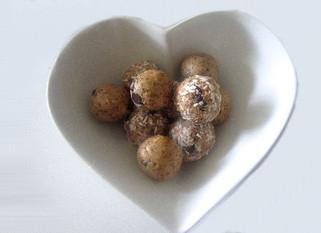 Chocolate PPB Protein Balls