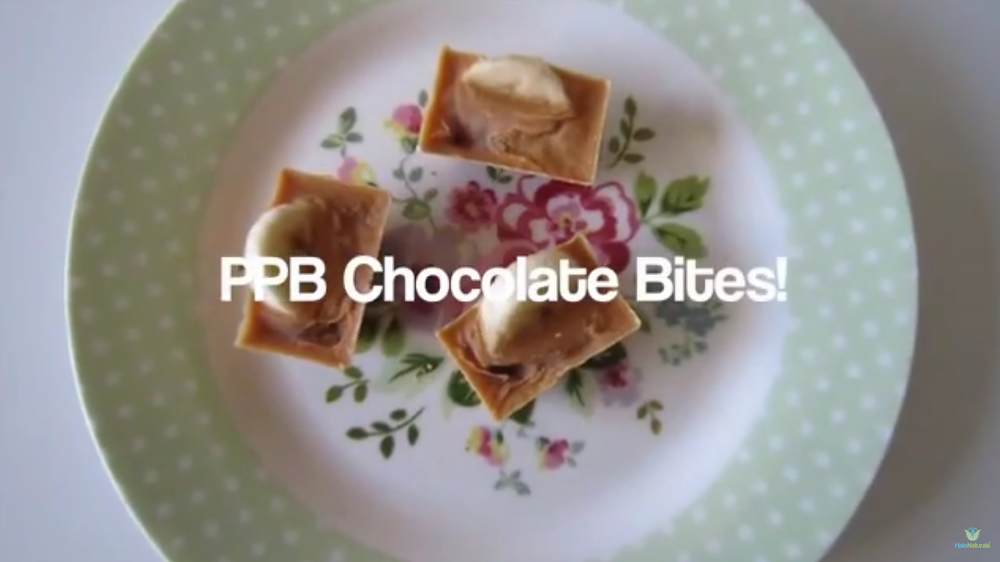 PPB Chocolate Frozen Bites