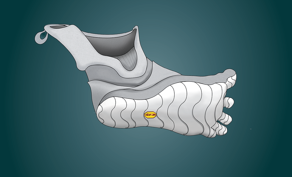 Footware_projectupdate_V214.png