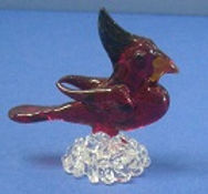 mini cardinal.JPG