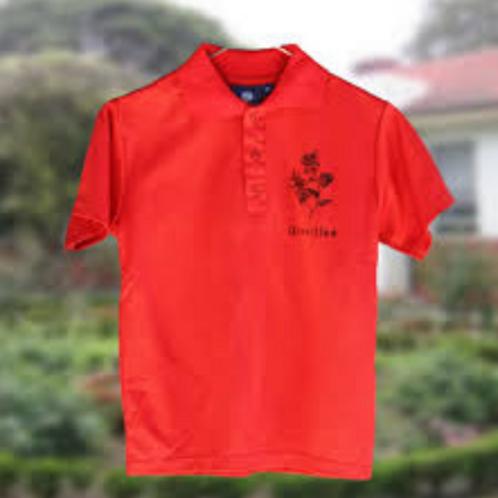 Faction Polo Shirt - Grevillea