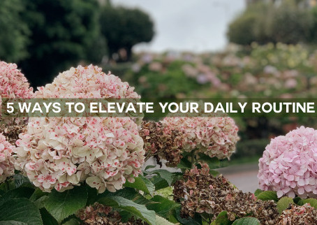 5 Ways to Elevate Your Daily Routine