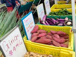 Farmers Market in Palo Alto🍓ファーマーズマーケットへ行ってきました