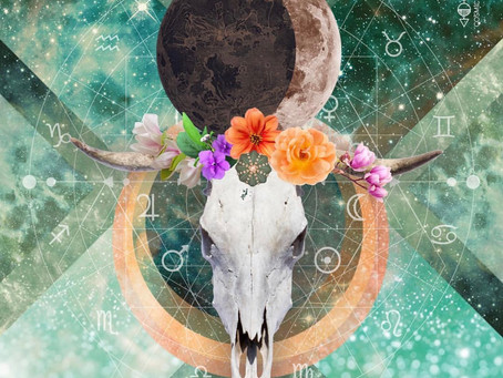 New Moon in Taurus: Allowing New Visions to Blossom
