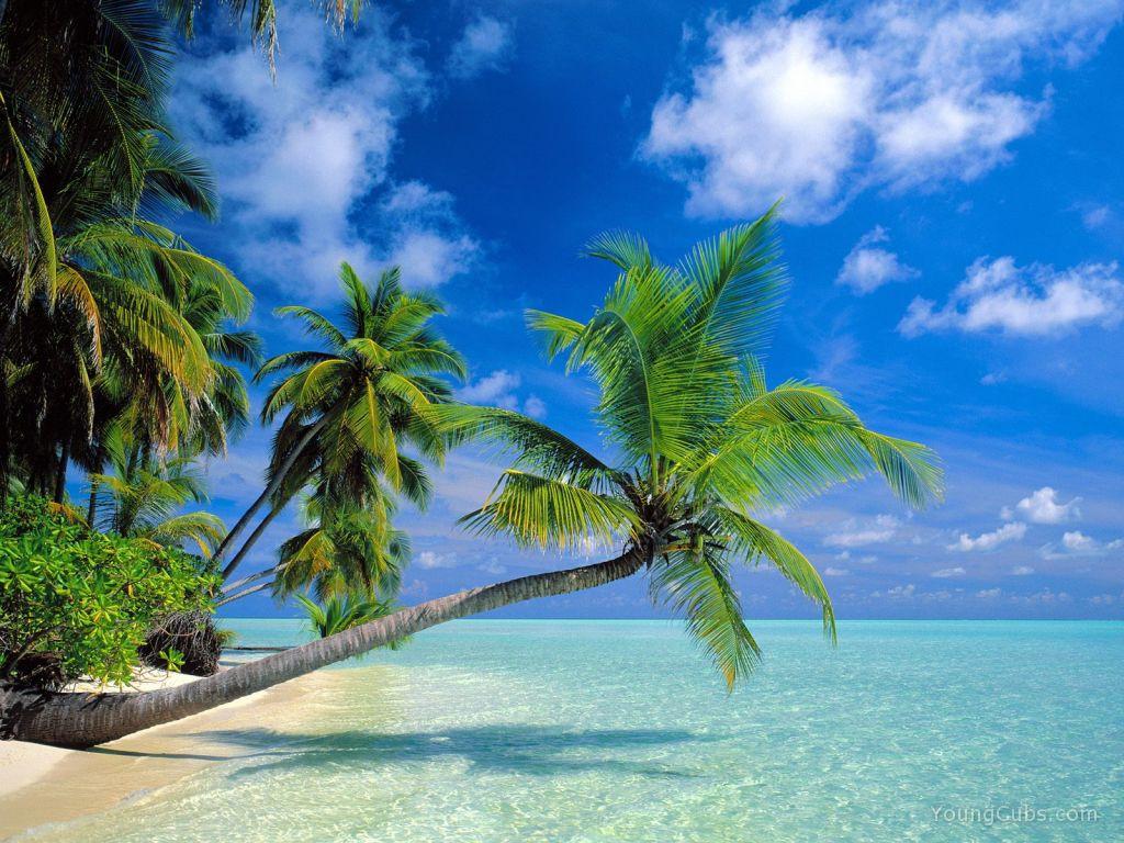hawaii10_orig.jpg