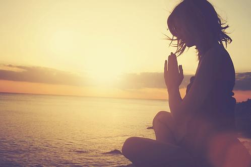 Mindfulness Certification Training