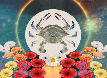 July New Moon in Cancer: Balancing Inner Lives and Moving Beyond Comfort